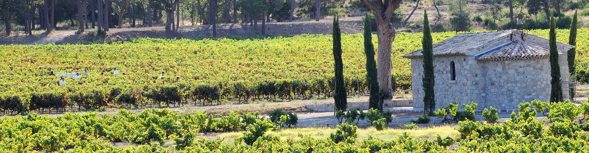 Création du site Internet du Conseil Interprofessionel des Vins de Provence