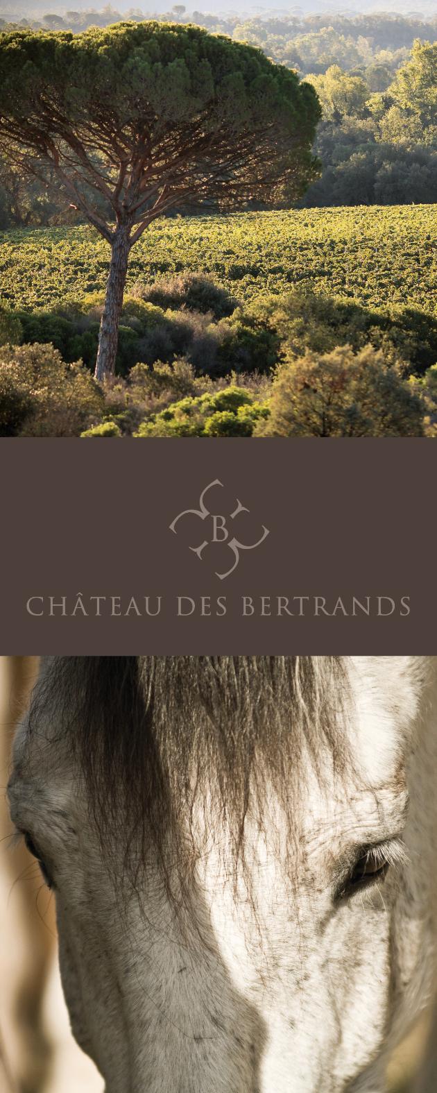 identité-chateau-bertrands